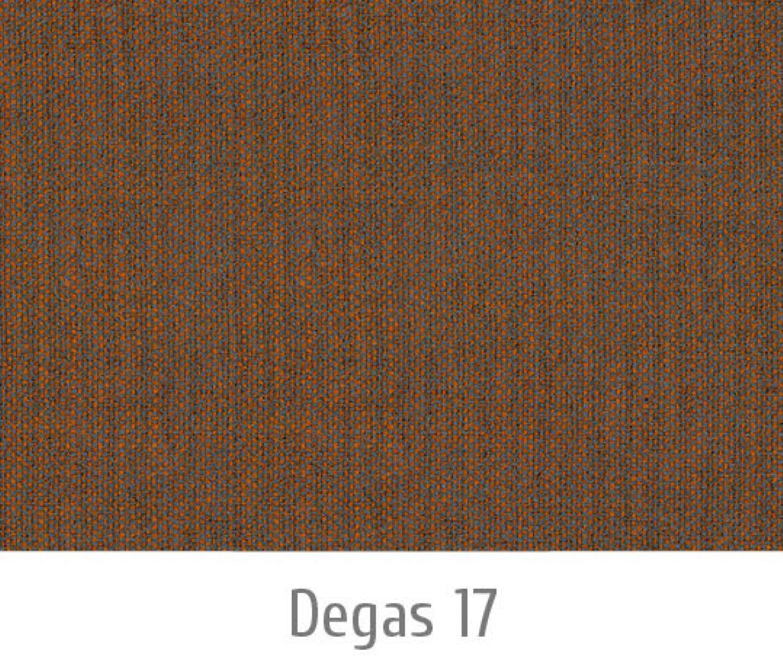 Degas17